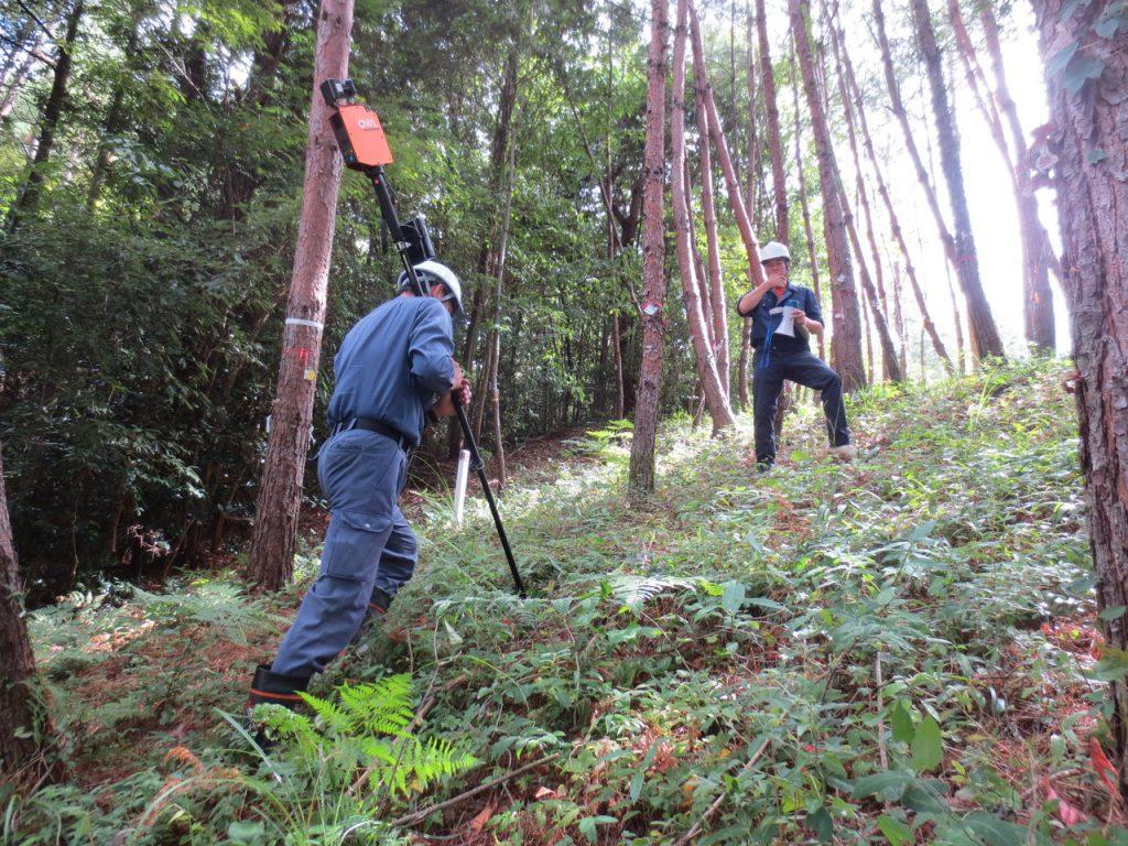 赤松試験林で計測体験